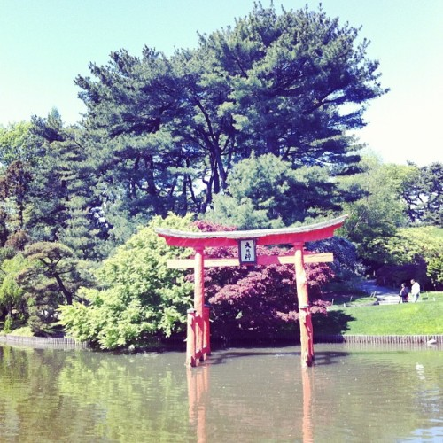 Enjoying the Sakura Matsuri festival on a glorious Sunday (Taken with Instagram at Sakura Matsuri Cherry Blossom Festival)