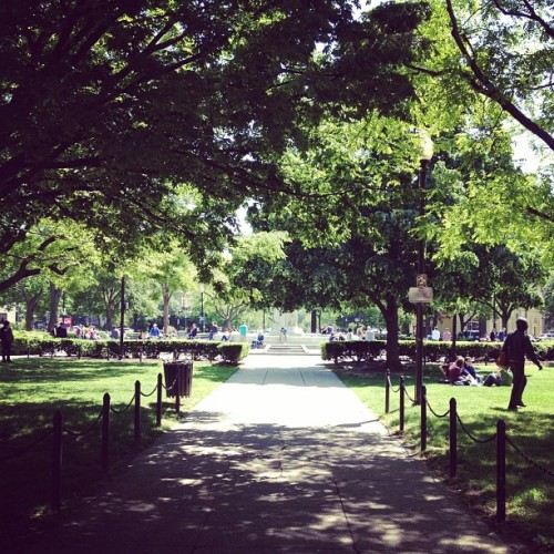 Dupont Circle, a beautiful spring day (Taken with instagram)