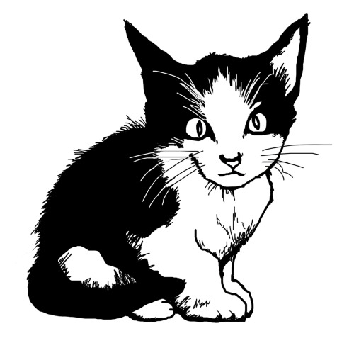 My kitten Lola. Drawn in photoshop. April 2012