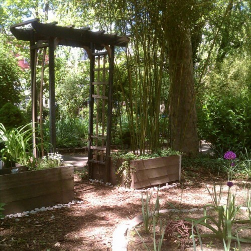 Peaceful Sunday (Taken with Instagram at M'finda Kalunga Community Garden)