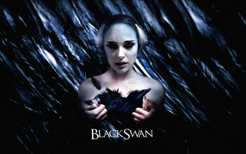 Black Swan Wallpaper by ~ernestol