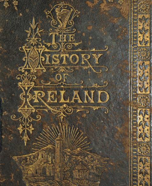 elven-fox:  forbiddenalleys:  History of Ireland 1883  Fact; Irish is my favourite accent.