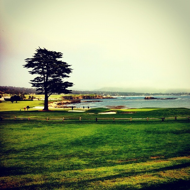Taken with Instagram at Pebble Beach