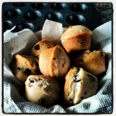 Chocolate Chip Muffins <3  (Taken with instagram)