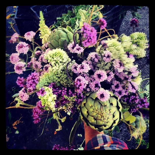 "#bouquetoftheday ""could have been yours edition"" w/ artichokes, verbena, centranthus. (Taken with Instagram at @theHFM)"
