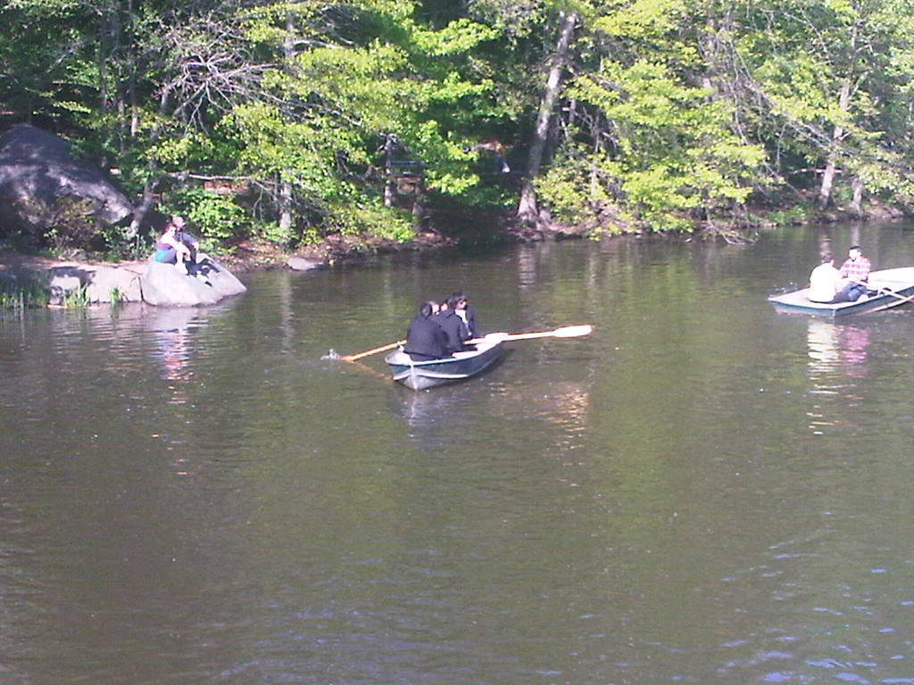 lol at Alexander Wang canoeing in central park