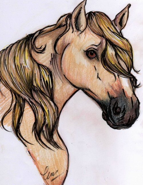 (via RDR Kentucky Saddler by *BumbleBeeFairy on deviantART)
