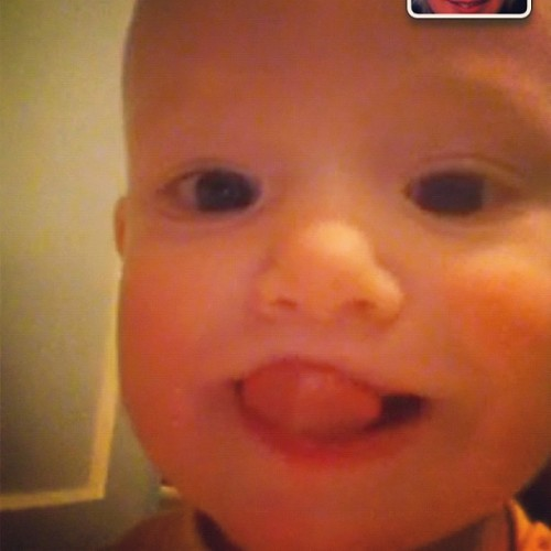 I got to FaceTime with my family, Bugga was extra cute (Taken with instagram)