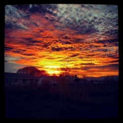 Sunset. Breathtaking.  (Taken with instagram)