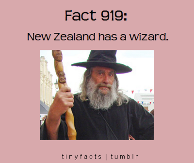 tinyfacts:  *  Sure they do