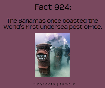 tinyfacts:  Reblog and click on the picture for more info.