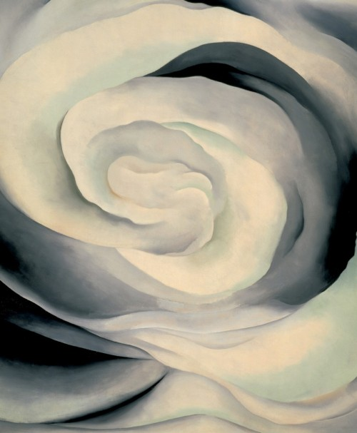 nikkiltree:  Abstraction White Rose, Georgia O'Keeffe, 1927