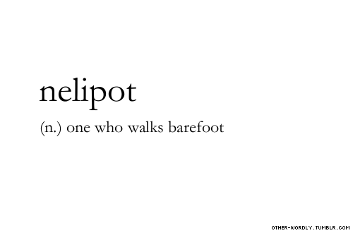 other-wordly:  pronunciation |  'nel-i-pot\  submitted by |  PANDICULATION [thenelipot] submit words | here