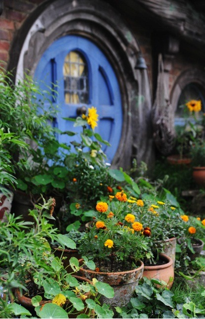 hobbithouses:  hobbits like flowers