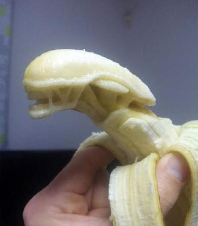ajermseyeview:  Banana sculpture genius.