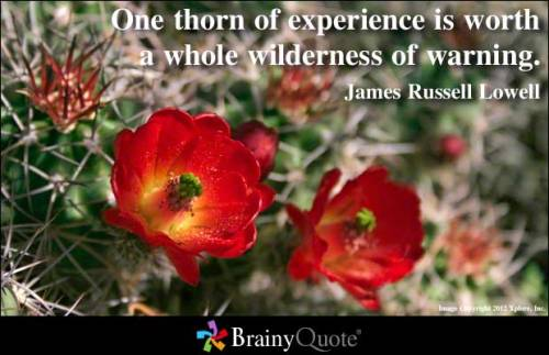 One thorn of experience is worth a whole wilderness of warning. - James Russell