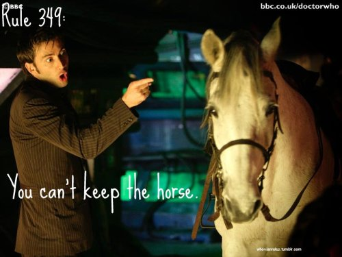 Rule 349: You can't keep the horse.  SUBMISSION! {Image Credit}