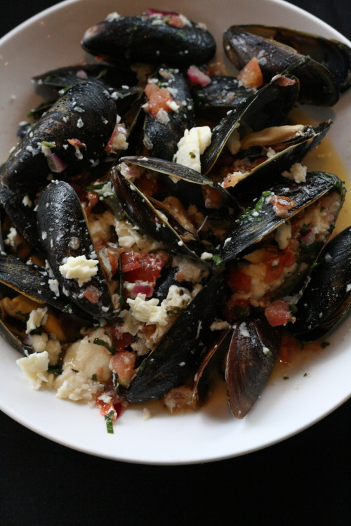 Les Moules - Sautéed mussels with tomatoes, garlic, basil, oregano, chili flakes, feta cheese, white wine, and olive oil at Evo Bistro