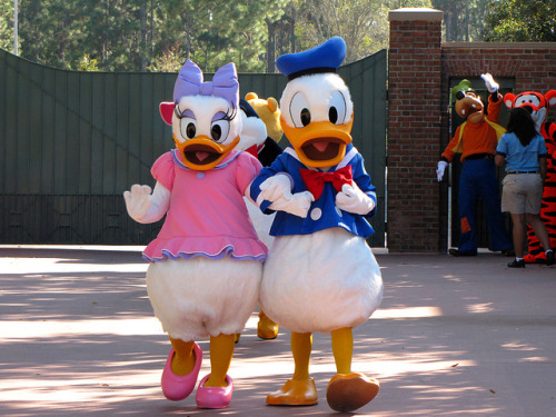 Donald and Daisy by disneylori on Flickr.