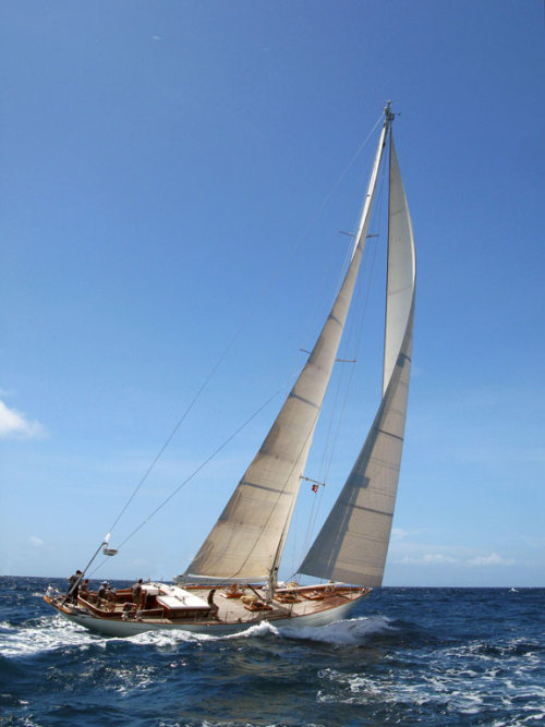 Antigua | Sailing in a Classic Yacht Regatta
