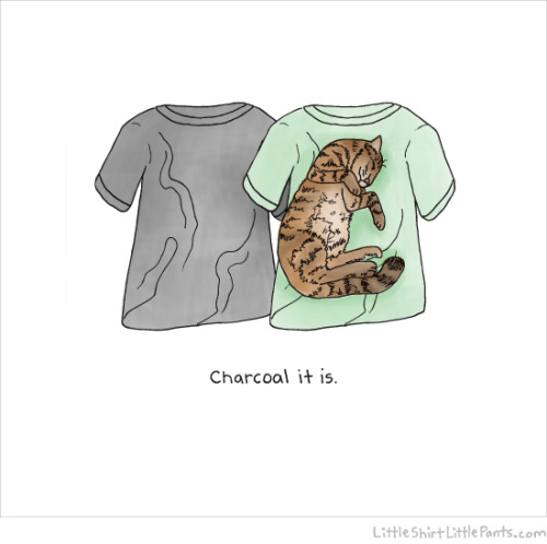 """Charcoal it is"" by little shirt, little pants."