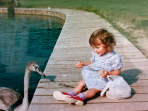 Me, aged three. In Cosmeston Park. With a swan.