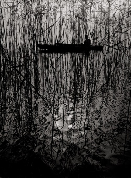 mondonoir:  Ruth Hallensleben, Paddler in a boat on Lake Constance, 1950 +  Vintage ferrotyped gelatin silver print on agfa paper
