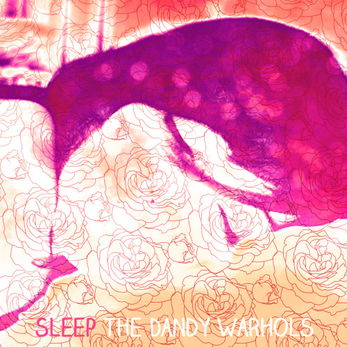 Sleep (The Dandy Warhols).