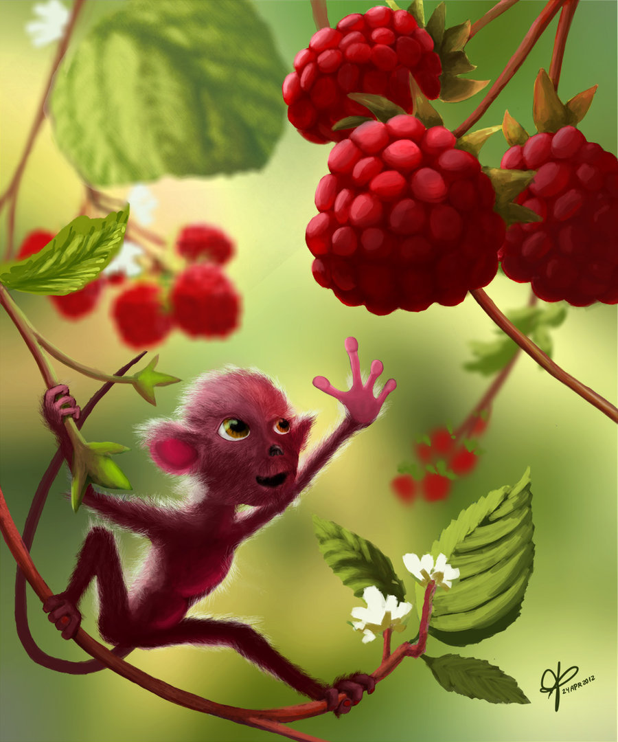 creaturesfromdreams:  Raspberry Monkey by ~peabody111 —-x—- More: | Animals | Random |