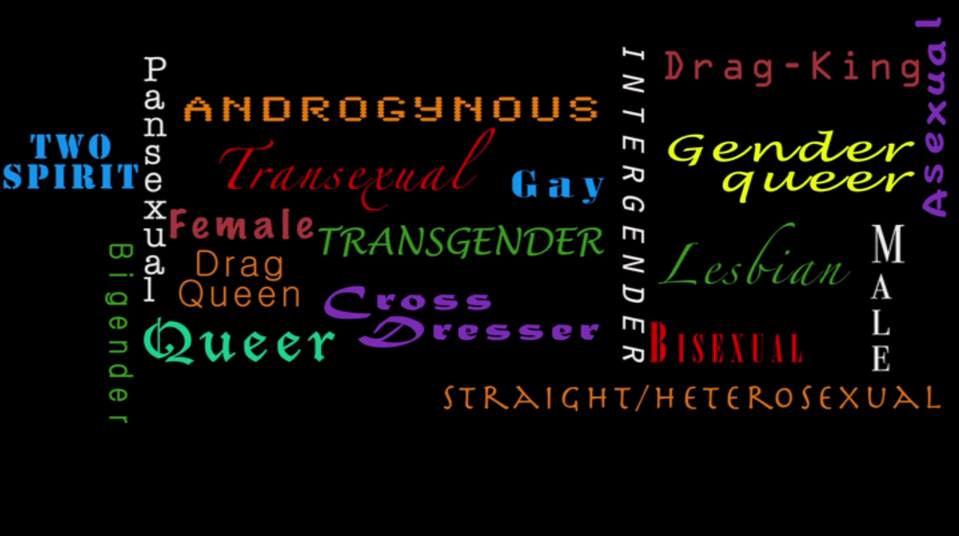 Trans-queer-pansexual-bigender-two-spirit-lesbian-gender-queer graphic created by one of the terrific IMPACT film interns…for a film project, but the image is so great on it's own that we just had to share.