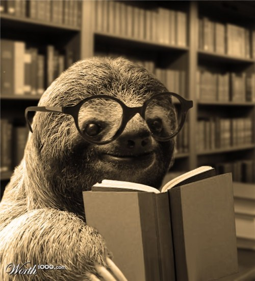 Who ever said sloths weren't good students?