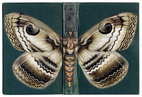 "Bugs on book covers Bristol, England-based artist Rose Sanderson repurposes worn book covers as canvases for her ""bugs on book covers"" paintings. Really beautiful work. See more on her site here. (spotted on Colossal)"