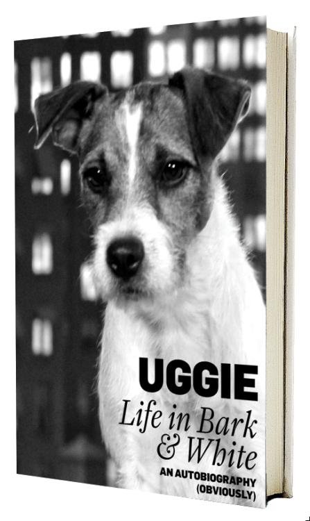 "shortformblog:  Uggie, the uber-cute dog from ""The Artist,"" has a memoir coming out soon. Here's what we think the cover should be. (ht Matt)  Awww!"