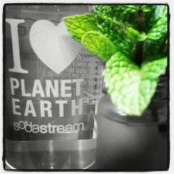 Loving my Sodastream! Just a squeeze of key lime & mint from our garden= instant mocktail (Taken with instagram)