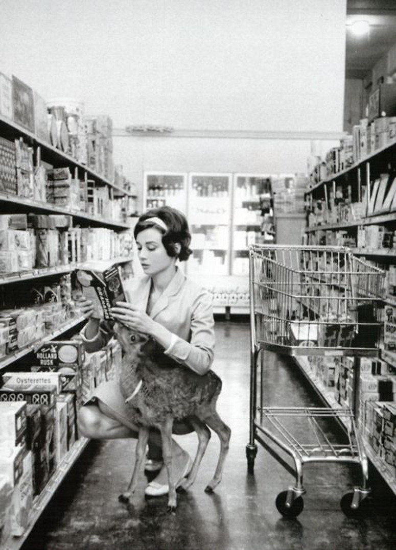 pointsonacurve:  Audrey Hepburn at the market with Ip the deer, 1958 Photo by Bob Willoughby