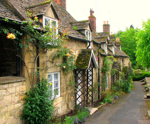 | ♕ |  Cottages in May - Vineyard Street, Cotswolds  | by © Sandra Leidholdt