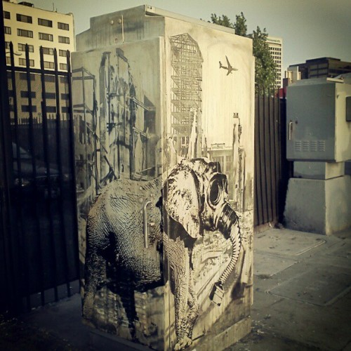 eddiecolla:  #eddiecolla (Taken with instagram)