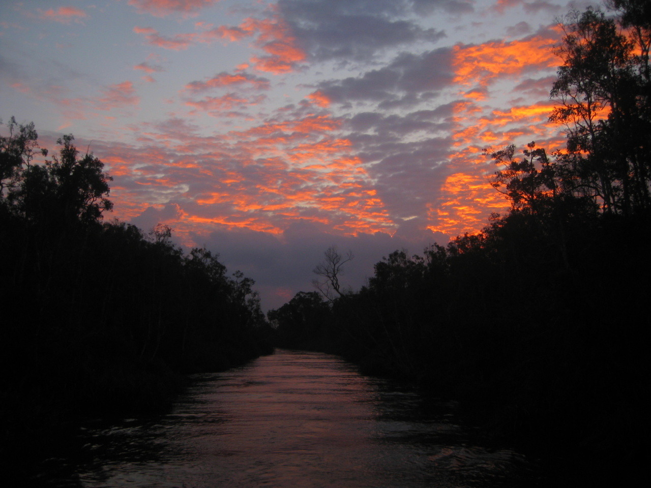 Sunset downriver of Camp Leakey, an orang-utan preserve in Kalimantan, Indonesia.