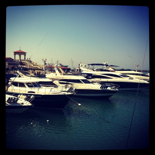 Sochi Marina Where are the customers' yachts? Umm, maybe in Sochi? via: Instagram