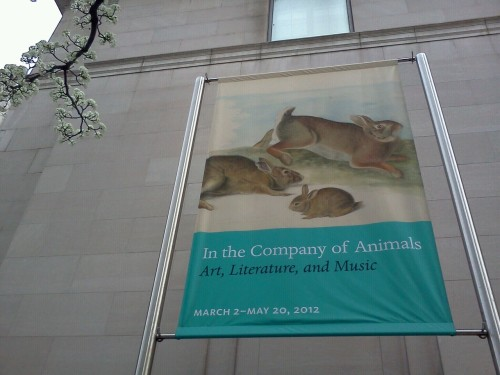 Bunnies at the Morgan Library
