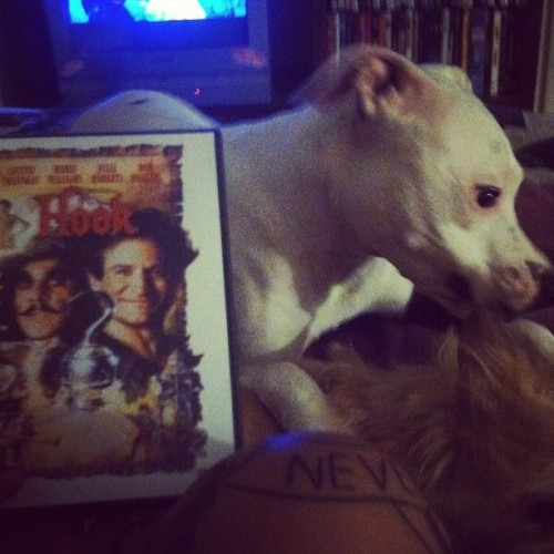 My night 👍#hook #crazydogs #tattoo  (Taken with instagram)