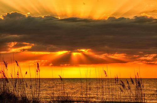 llbwwb:  Golden Gulf Sunset (by mlibbe)