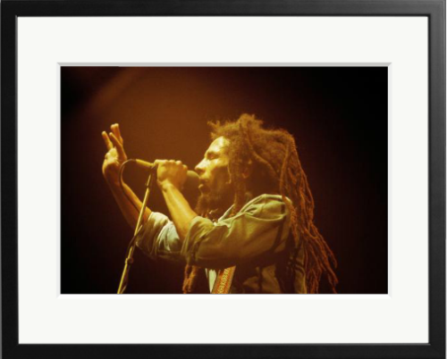 Artist of the Month for May - Bob Marley performing live on stage at the Brighton Leisure Centre, July 1980.