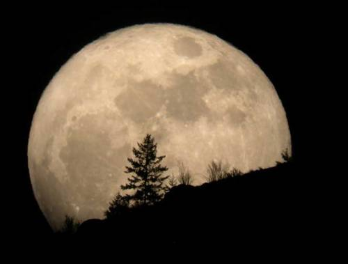 discoverynews:  Biggest Full Moon of 2012 Occurs This Week This month's full moon coincides with the moon's closest approach to Earth. keep reading  May 5th 11:35 PM yall.