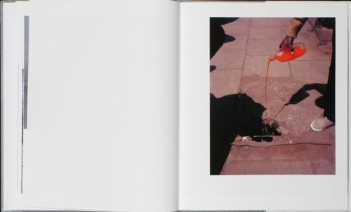 jennilee:  Parasomnia, by Viviane Sassen. Published by Prestel, 2011