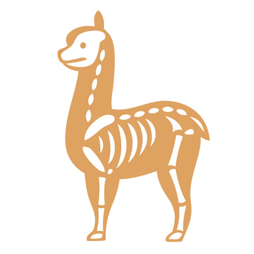 Skeleton of Alpaca by Kimiaki Yaegashi