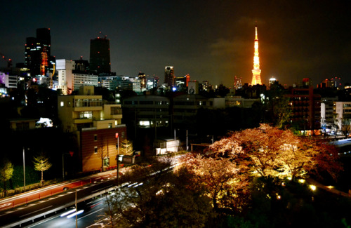 The streets of Tokyo at night.