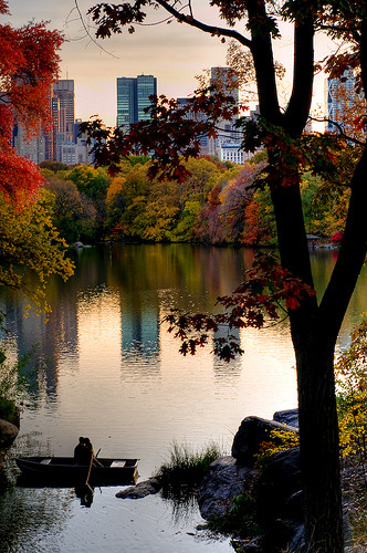 "save999things:  #45. Central Park ""I really believe I was happier when I slept on a park bench in Central Park than during all the years of 'the perfect lover' stuff."" Rudolph Valentino"