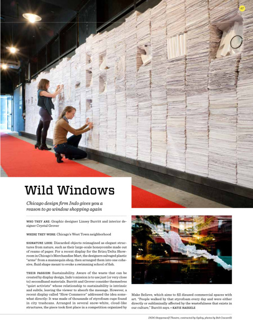 Design Bureau  May 2012 Issue - it's oh so wild