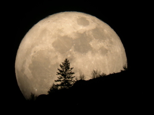 early-onset-of-night:  BIGGEST FULL MOON OF THE YEAR WILL OCCUR THIS WEEKENDThe moon will officially become full Saturday, May 5th at 9:35 p.m. Mountain Time. This is also when the moon will be closest to Earth, called the lunar perigee. Whenever the moon's fullness coincides with its perigee, we have what has been nicknamed a 'supermoon'.Cool, huh?But, wait, there's more. Not only does the moon's perigee coincide with the full moon this month, but this perigee will be the closest to Earth of any this year. In other words, it's the perigee of perigees. Of all the times in 2012 that the moon will be closest to the Earth, this time will be the closest of all. It's the closest of close moons. As it passes overhead in the dark sky, bulbous and bright, you will be able to to hear a slight whooshing sound.For reals.Because of all this closeness and fullness, the moon will be 16% brighter than normal, so eye protection may be necessary.The last supermoon occurred in March 2011. That's it in the picture above, taken by a guy named Tim McCord. Look how fucking close it is. Jesus.The best way to view this month's supermoon is by stepping away from your computer and actually going outside to look at it, and the best time to do that is just after it rises or just before it sets. It will appear even bigger then, filling the whole sky with its cold, creepy moonness.Yay!Share this on Facebook. Help spread the word about the really big moon!